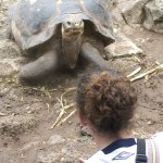 Community Service Ecuador & the Galapagos