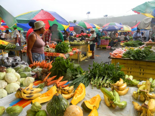 Sample fresh fruits and vegetables at a local Dominican market.