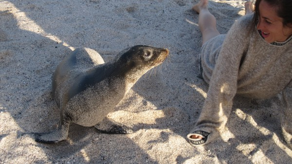 Explore the Galapagos Islands with local naturalists.