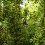 Soar over the rainforest canopy on a zip line!