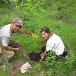 Visit a national park to complete reforestation projects in areas where our local contacts are conducting research on monkeys.