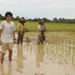 Help plant rice and complete a short-term service project in a rural village.