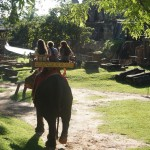 Enjoy a majestic ride on an elephant!