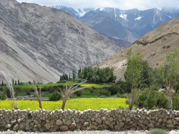 Himalayas India Asia Teen Travel Program