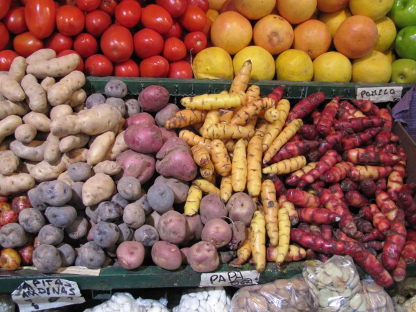 Ecuadorian produce markets on our Community Service program in South America