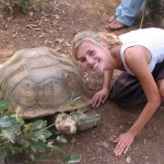 The nearby Bandia Wildlife Reserve is a great place to see giant tortoises, rhinos, giraffes, and other wildlife.