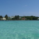 Belize Snorkeling Marine Biology for Teens