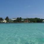 Belize Snorkeling Marine Biology for Teens