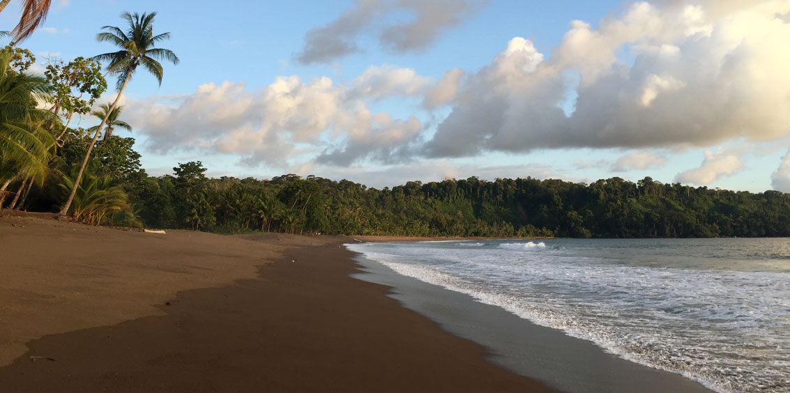 Leader Story: Finding Wildness & Solitude in Costa Rica